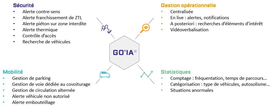 Détections et analyses de GO'IA pour solution LAPI sur-mesure